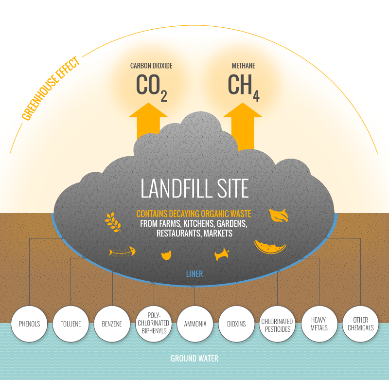 Image courtest Of http://gazasia.com/biogas-source/landfill-sites-2/